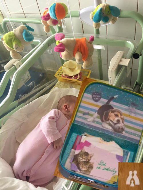 Opustené bábätká už bude mať kto v pôrodnici poláskať