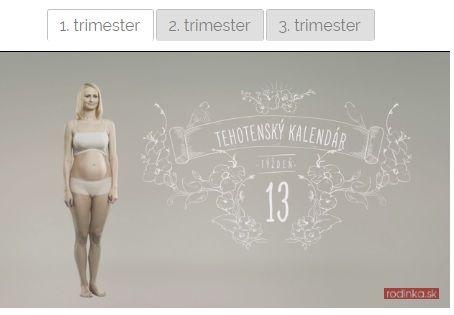 Tehotenský kalendár s videami